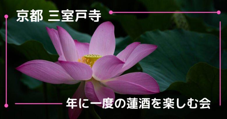 京都 三室戸寺蓮酒