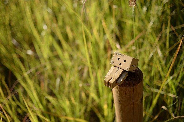 草原のAmazonキャラクター