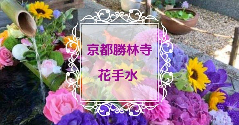 京都勝林寺花手水のアイキャッチ画像を撮影した写真