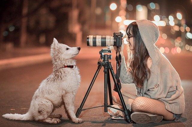 ワンコを撮っている女の子