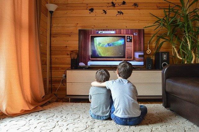 テレビを見る兄弟